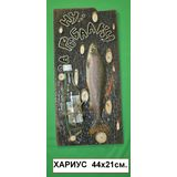 Панно Рыба муляж с держателем Ну за рыбалку (Хариус) 44*21 см