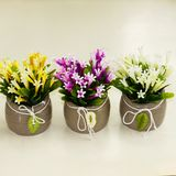 Цветы violet flowers в керам.горшке с листом 17*12см