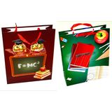 Пакеты подарочные School student 3d XY-304 УПАКОВКА 12шт (1шт=45р, 26*32*10 см)