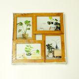 Коллаж из 4-х рамок д/ф пластик (цвет ясень, габариты 30*30 см)