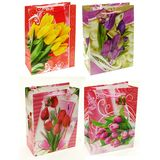 Пакеты подарочные Тюльпаны С-13532 УПАКОВКА 12шт (1шт=22р, 17*23.5*8 см)