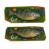 Панно Рыба муляж Окунь 36*13см цвет