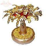 Дерево денежное в круглом золотом горшке 20*20см